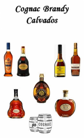 24_cognac-it-eng.jpg