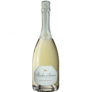 1777_242_marchese-antinori-blancdeblancs-400.png